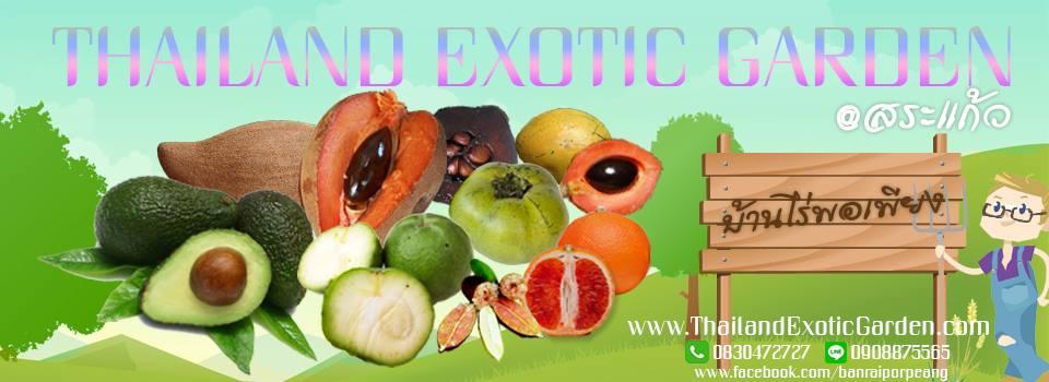 จำหน่ายต้นมะนาวคาเวียร์ ๒๐ สายพันธุ์ สั่งตรงจากประเทศออสเตรเลีย