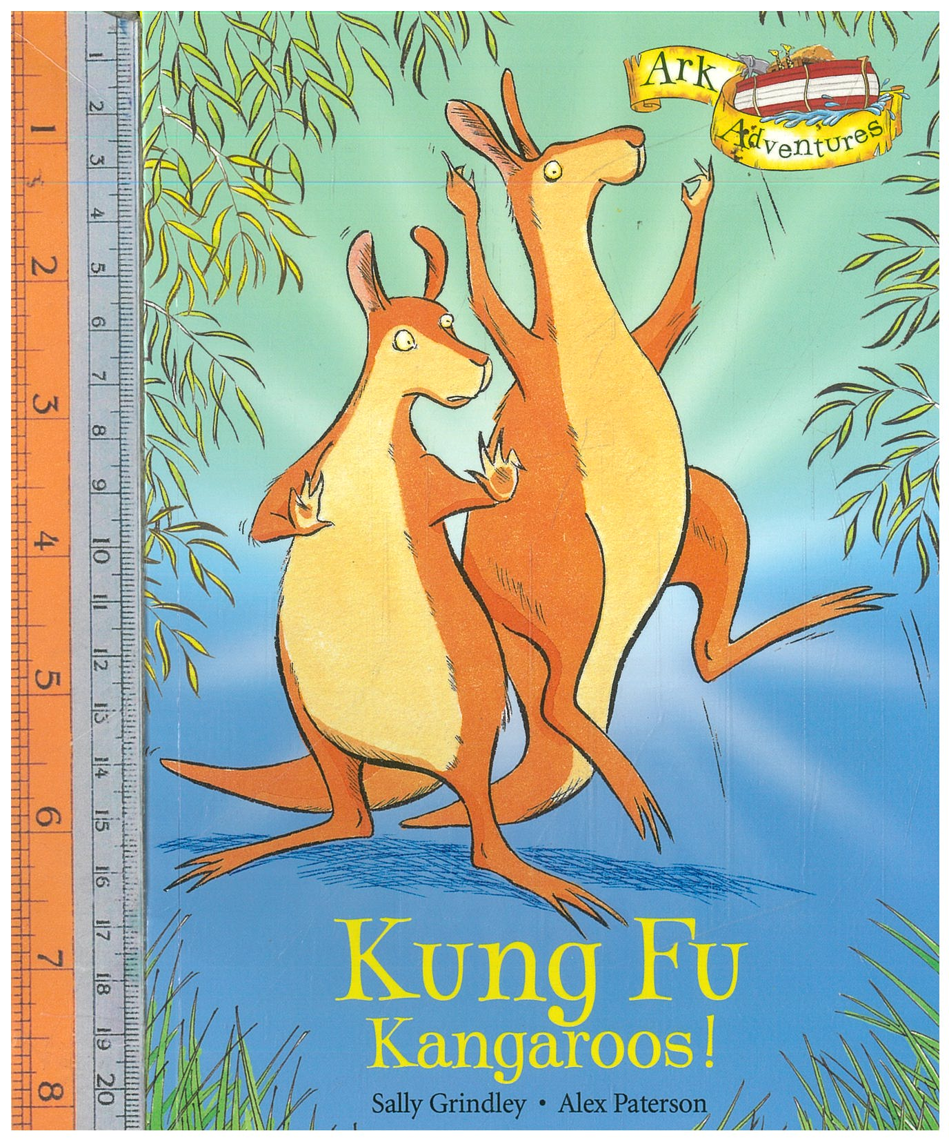 kung fu kangaroos