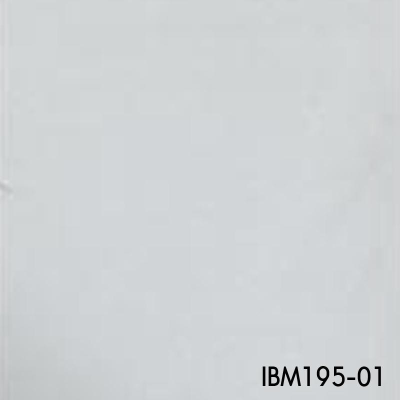 IBM195