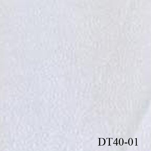 DT40-01
