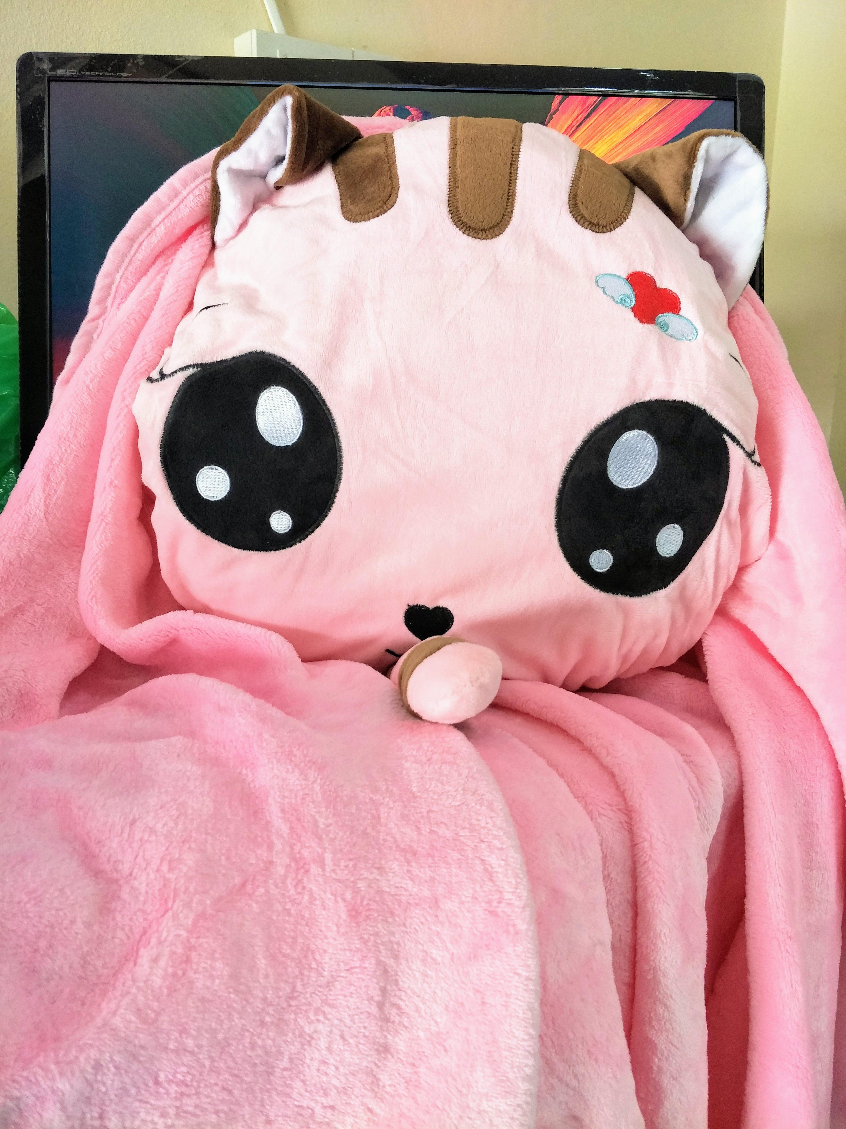 SC0009 Free ปักชื่อบนผ้าห่ม!! ตุ๊กตาหมอนผ้าห่มแมวเหมียวแอ๊บแบ๊ว สีชมพู น่ารัก มีที่ซุกมือ ผ้าห่มกำมะหยี่นุ้มนุ่ม