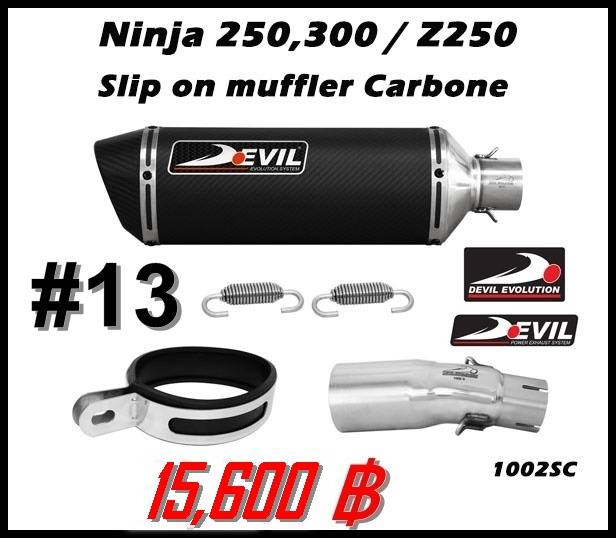 ท่อ Kawasaki Ninja250-300/Z250-300 Devil Slip on muffler carbone #13