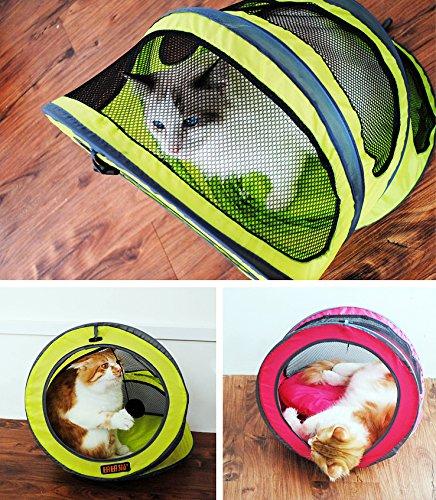 บ้านแมว อุโมงค์แมว สีเหลือง